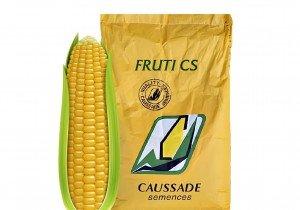 Насіння кукурудзи Caussade Semences Фруті КС