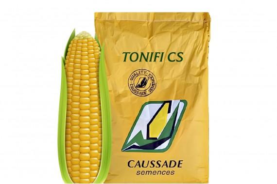 Насіння простого гібрида кукурудзи Caussade Semences Тоніфі КС