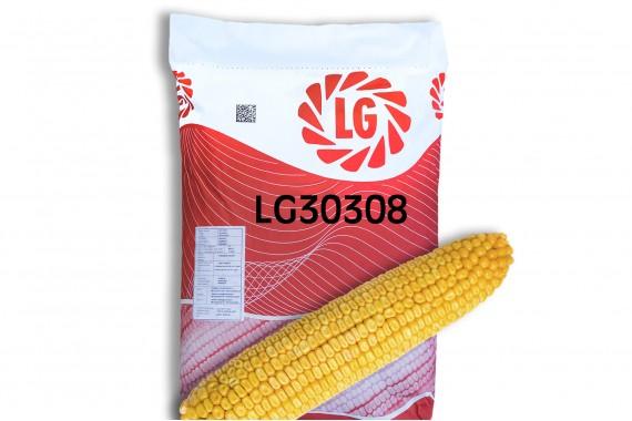 Насіння гібриду кукурудзи Limagrain ЛГ 30308