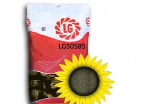 Насіння соняшнику Limagrain ЛГ 50585