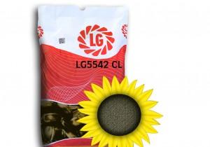 Гібрид насіння соняшнику Limagrain ЛГ 5542 КЛ