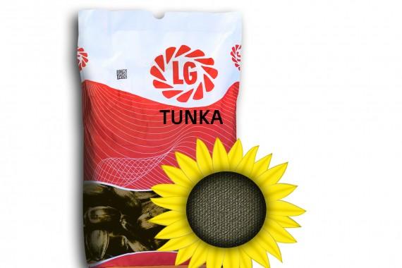 Насіння середньораннього соняшнику Limagrain Тунка