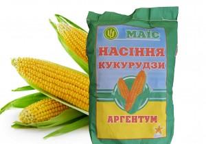 Насіння середньоранньої кукурудзи АПК Маїс Аргентум (ФАО 250)