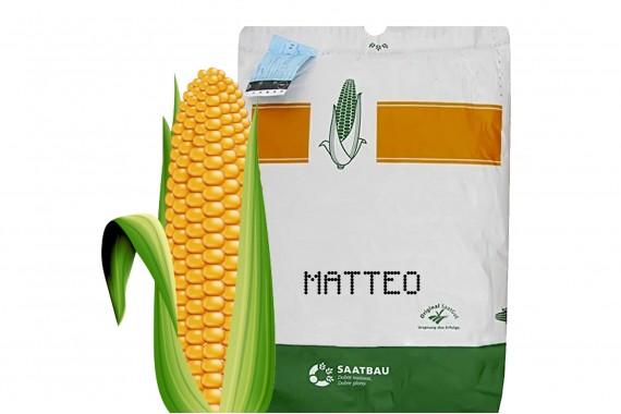 Маттео ФАО 320