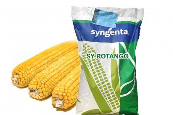 Насіння кукурудзи Syngenta СІ Ротанго