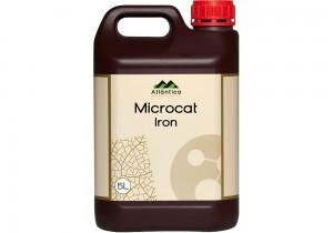 Микрокат железо