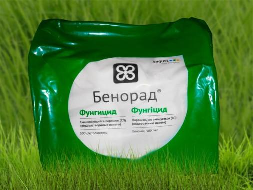 Системний фунгіцид і протруйник посівного матеріалу Avgust Бенорад, ЗП 5 кг