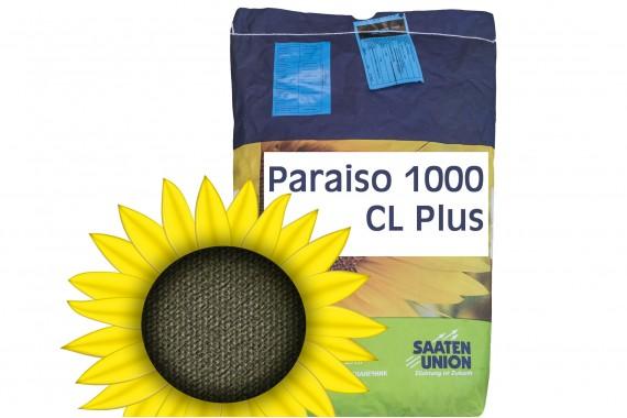 Насіння соняшнику Viterra Seed Параізо 1000КЛ Плюс