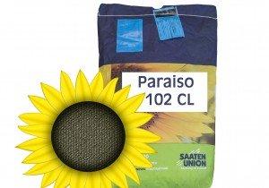 Посівний матеріал соняшнику Viterra Seed Параізо 102 CL