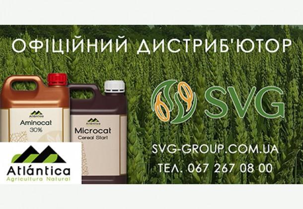 Рекомендації щодо вирощування пшениці