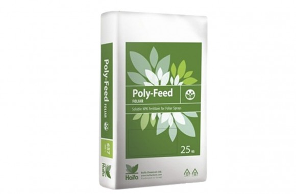 HAIFA POLY-FEED Foliar 21-21-21