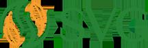 SVG Group